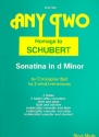 Homage to Schubert Sonatina d minor for 2 wind instruments